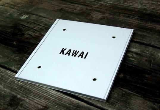 kawaiFS1