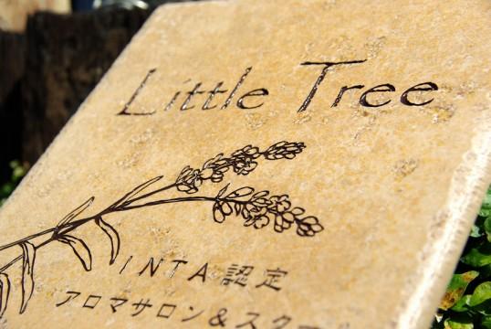 littletree1