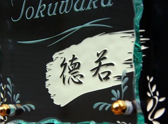 tokuwakaFSLED3