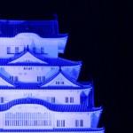 ライト・イット・アップ・ブルー(LIUB)