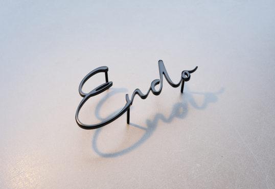 endoShin2